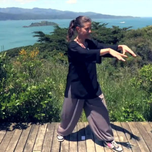 Tai Chi 5 Minutes a Day   Module 01 - easy for beginners