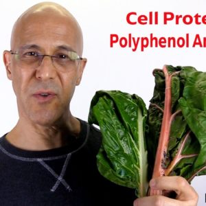 Protect and Heal the Cells of Your Body | Dr Alan Mandell, DC