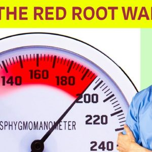 This Red Root Warrior Quickly Lowers High Blood Pressure | Dr Alan Mandell, DC