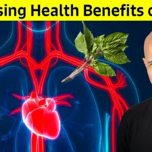 Surprising Health Benefits of Basil (The King of Herbs) | Dr Alan Mandell, DC